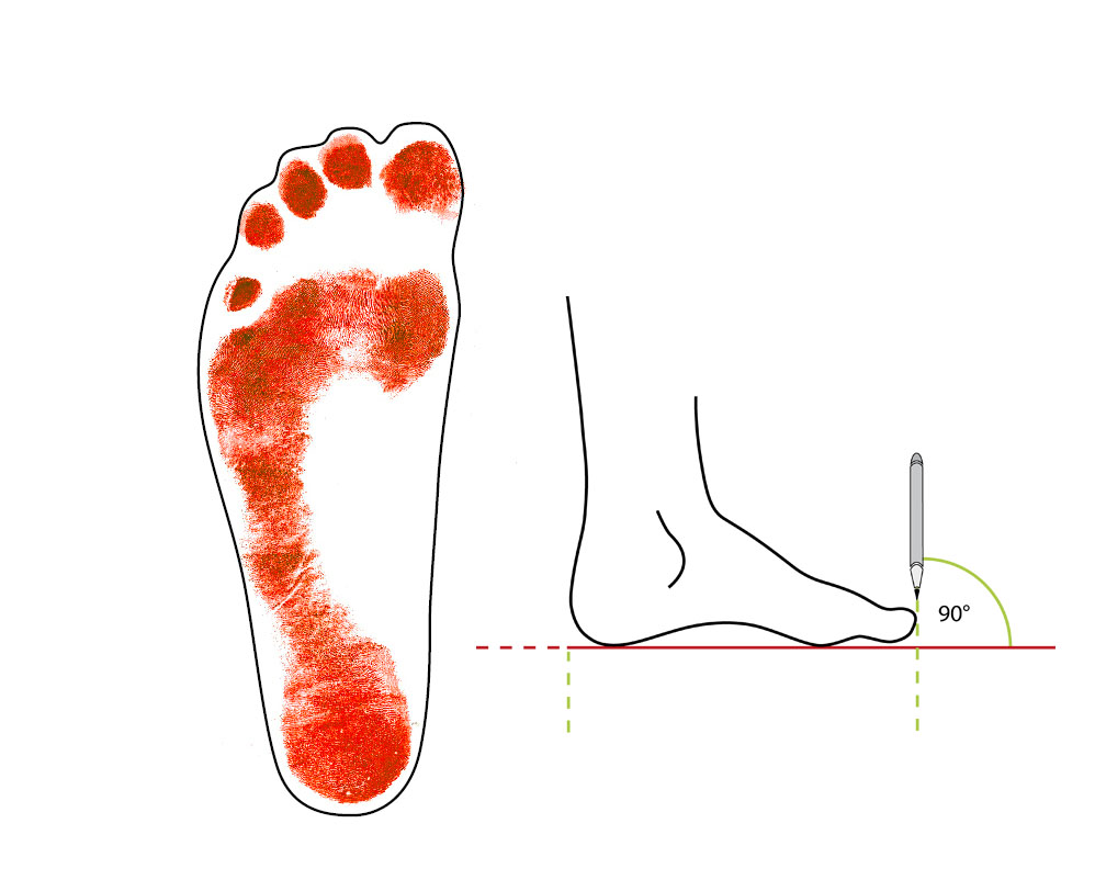 2. Trace the outline around your foot