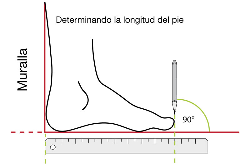 Cómo mido la longitud de mi pie (+ 6-8 mm)?