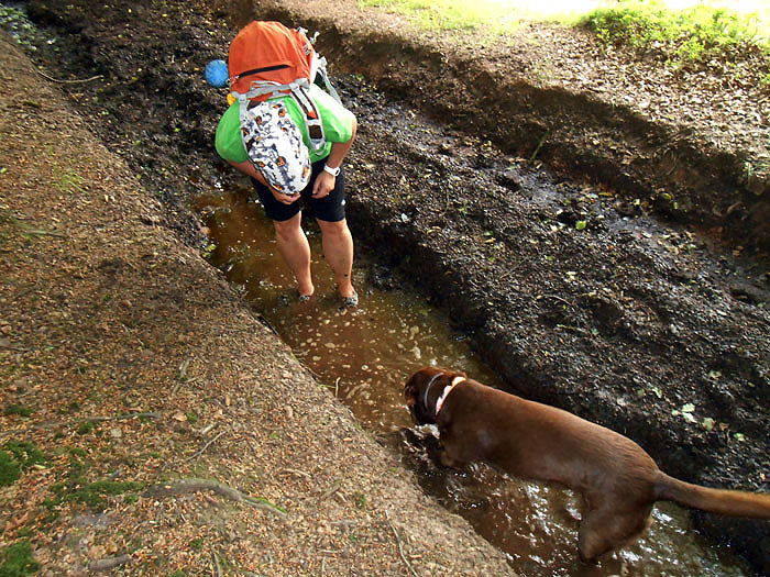 Follow your dog! This can only be done without problems with Paleos®ULTRA! Thank you Fizz Fry for the awsome photos!