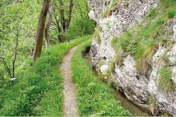 """Suonenwanderung entlang dem """"Niwärch"""""""
